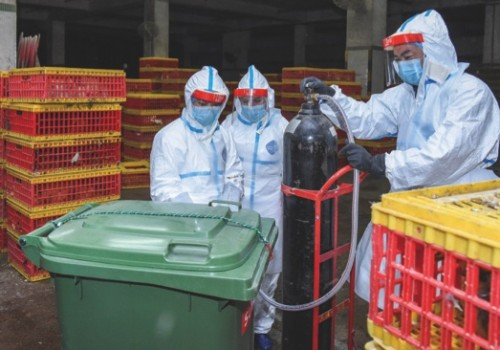 IACM staff disinfects the Nam Yue Wholesale Market and culls live poultry in an attempt to control the influenza virus