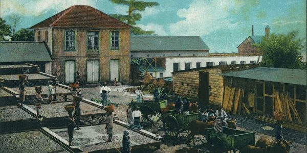 """One of the postcards featured in """"Memories of Moments – Macau and Lusophone African and Asian Regions in Photograph Postcards"""""""