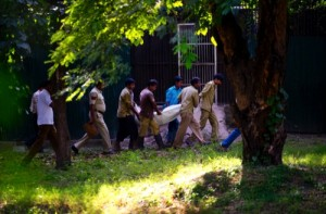 Workers carry the body of a man who was killed by a white tiger past its cage at the zoo in New Delhi