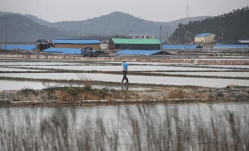 A man walks through a salt farm on Sinui Island, south of Seoul